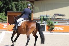 IMG_7852 (dreiwn) Tags: dressage dressur dressuur pferd reitturnier turnierreiten pferdesport horse horseback horseriding equestrian reitverein dressurprfung kandare doublebridle reiten pferde reitplatz ridingarena