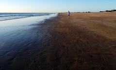Maana en Playa del Ingls / Bore yn Playa del Ingls (Rhisiart Hincks) Tags: aod glanymr kostalde coast cte arfordir seaside ltraed louchtreid oinatzaztarna  huella voetafdruk pegada  luodda lorg urma nyawo ltroed ayakizi fusabdruck fotspr odtisstopala trace empreinte grancanaria jogging loncian bore mintin beure madainn morning maana goiz plaja playa hondartza trigh beach traeth traezh traezhenn plage playadelingls maspalomas