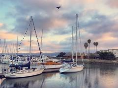 Goodbye September (pixelmama) Tags: morning shotwithiphone6s mobilephotography eastbay marina harbor sailboats delphinus sunrise pixelmama california emorycoveyachtharbor emeryville iphone6s