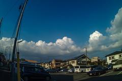 SDQ_3365lr (yoshitoshi ABe) Tags: 20160904 吉祥寺 井の頭公園 sdquattro sigma15mmf28exdgdiagonalfisheye