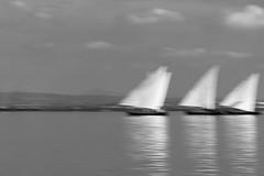 Triangulos en movimiento (Rafa Barajas) Tags: albufera regata 2016 valencia vela latina deporte competencia tradicional tradition sport