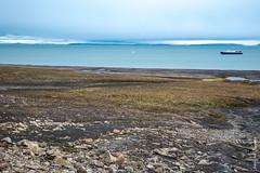 2016-08_Spitzbergen-1203.jpg (roli.laesser) Tags: arktis reisen spitzbergen svalbard spitsbergen