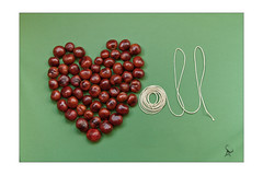 Love Conkers All (Kurseong I) Tags: conkers nuts horse chestnut tree seed emotion love romance string game children green brown