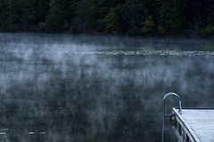 Autumn Morning at One Mile Lake (dbsteers) Tags: pemberton britishcolumbia fall2016 onemilelake fall autumn mist fog
