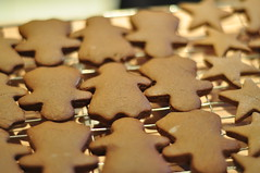 Gingerbread ladies (charlottehbest) Tags: christmas ladies food cooking stars baking december gingerbread homemade biscuits baked 2012 cooling charlottehbest