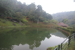 082 (balagopalmohan) Tags: rain country wyanad