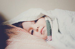 10.365: snuggle (Lisa   goodknits) Tags: bed sleep andrew blanket 365 project365 3652013