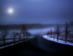 Fading daylight (Diana_Khalil) Tags: snow fog landscape evening moonlight bluehour mygearandme mygearandmepremium mygearandmebronze mygearandmesilver mygearandmegold rememberthatmomentlevel1 besteverdigitalphotography besteverexcellencegallery vigilantphotographersunite vpu2 vpu3 vpu4 vpu5