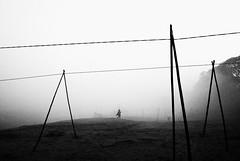 misty morning explored #54 Jan20, 2013 (swarat_ghosh) Tags: street blackandwhite india monochrome lines landscape interestingness interesting nikon streetphotography explore isolation assam guwahati brahmaputra mistymorning explored banksofbrahmaputra