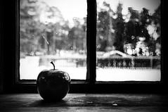 applebw (Micael Carlsson) Tags: life wood old winter house tree apple window fruit relax outside see still cabin nikon fotograf hand sweden alt stilleben swedish karlstad inside nordic pane scandinavia apfel tranquil hus blown kil värmland äpple charlottenberg arvika gammal deje torsby kristinehamn varm sunne hagfors varmland forshaga hällefors munkfors mariebergsskogen värmlan fotografkarlstad miccar wwwmicaelcarlssonse micaelcarlssonfotograf
