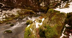A PICTURESQUE NARRATOR BROOK (russell D7000 (D80)) Tags: trees england snow west water beauty rocks long exposure south devon brook lichen picturesque dartmoor mosses narrator burrator sheepstor