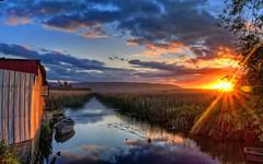 The little boathouse (charlesbrooksphotographer) Tags: chile blue sunset mist reflection tree fog river reeds boat haze sundown shed willow flare sunburst ripples dinghy corrugatediron valdivia losrios