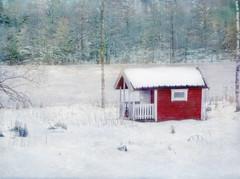 Hut at the lake. (Bessula) Tags: winter lake snow texture nature forest sweden country hut tistheseason photomix impressedbeauty bessula awardtree magicunicornverybest magicunicornmasterpiece bestevercompetitiongroup creativephotocafe