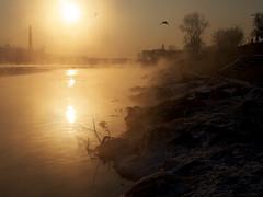 winter morning at Vistula River 3 (Darek Drapala) Tags: morning winter light sky sun cold color reflection nature water sunrise river landscape lumix europe drawing poland polska panasonic warsaw g2 warszawa panasonicg2 blinkagain