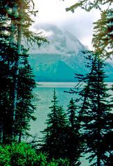 mountain lake, Alberta, Canada - NK1572 (photos by Bob V) Tags: lake mountains rockies alberta banff rockymountains mountainlake albertacanada banffnationalpark canadianrockies banffalberta banffpark banffalbertacanada cans2s