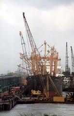 Dockside, New Orleans (alternate_world) Tags: usa skyline boats fishing louisiana ships neworleans cranes swamps mississippiriver houseboats alligators barges paddlewheel riverlife drydocks southlouisiana