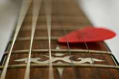 wood & metal (Caropaulus) Tags: music strings ibanez cordes guitare mediator macromondays