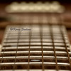 Macro Mondays:  Music. (#108 Musical Intrument) (Keeperofthezoo) Tags: music macro sepia bokeh guitar object dot musical instrument strings musicalinstrument fret guitarstring shallowdof macromondays markerdot