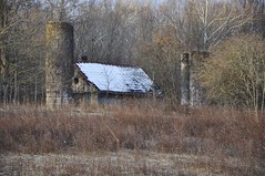 Old Barn (Plummerhill) Tags: trees barn weeds indiana silos browncounty deterioration latewinter