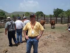 "SAINT CROIX - CARIBE - Convenção Mundial da Raça 2009  (36) • <a style=""font-size:0.8em;"" href=""http://www.flickr.com/photos/92263103@N05/8568404187/"" target=""_blank"">View on Flickr</a>"