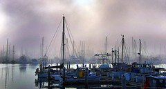 Foggy Marina (lhg_11/ Thanks you for 500,000 views of 6,371 iima) Tags: california weather fog mood piers earlymorning atmosphere maritime yachts fishingboats masts mixedlight venturaharbor 100comments venturacalifornia mygearandme mygearandmepremium mygearandmebronze mygearandmesilver mygearandmegold mygearandmeplatinum