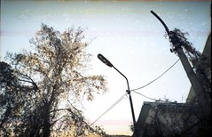 """Olympus_XA_KLadno_Unor_2013 (Churechawa) Tags: new cute art modern composition wonderful spectacular creativity photography photo amazing pretty artist view spirit contemporary fine picture atmosphere grand poetic mind soul stunning lovely charming elegant melancholy delicate striking author graceful epic breathtaking impressive magnificent exciting alluring stylish pictorial imaginative mastery dazzling lyric astonishing harmonious pleasing thrilling inventiveness arts"""" """"visual eligiac"""