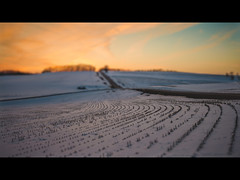 Waiting for Spring (Oooah!) Tags: road winter sunset snow colors spring corn hills madison rows crops