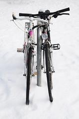 (Hugo Chinaglia) Tags: winter bw white snow black bike branco nikon europa europe swiss zurich bicicleta pb preto suia neve zurique inverno bycicle d90 18105mm