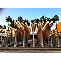 "iPhone Photo: LACMA ""Urban Light"" Lampposts (EthnoScape) Tags: california camera light sunset sky urban tree art lamp museum losangeles model artist photographer dusk palm palmtree lacma lampposts losangelescountymuseumofart ethnoscape urbanlight chrisburdens wlshire ethnoscapeimagery"