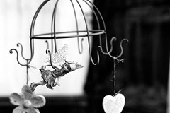 Little fairy (Leica M6) (stefankamert) Tags: stefankamert leica m6 film analog ilford voigtlnder nokton bw sw noir noiretblanc blackandwhite blackwhite fairy schwarzweis grain dof