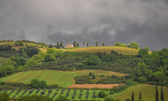 Val d'Orcia (ccr_358) Tags: ccr358 2016 spring primavera april aprile day postcard cartolina view scenery landscape panorama italia italy italien italie toscana tuscany provinceofsiena hills valdorcia knoll green cloudy grey ontheroad fields clouds light santantimo vineyards castlnuovodellabate