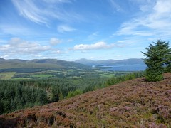 Loch Lomond, viewed from Gouk Hill, Bannachra Muir (luckypenguin) Tags: scotland lochlomond helensburgh balloch johnmuirway loch heather