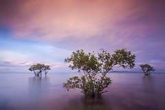 Sunset in Cagbalete (Nukie13) Tags: sunset cagbalete cagbaleteisland beach clouds travel landscape seascape nature serenity longexposure longshutter bw nd110 ndfilter gnd9leefilter