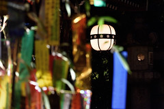 DSC_3937 (kazuchan_nara) Tags:   kyoto japan kitanotenmangu