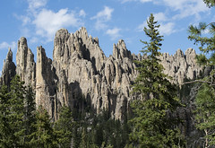 Cathedral Spires (Cat Girl 007) Tags: america blackhills boulders cathedralspires custerstatepark famousplace geologic geology granite landscape nature norbeckscenicbyway outdoors park rockformations rocks rocky scenic southdakota stones traveldestination trees usa