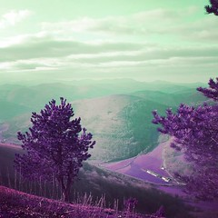 Another world. #app #ios #iphone6s #pyrenees #france #bearn #pyreneesatlantiques #france #paysbasque #basque #basquecountry #paisvasco #sudouest #purple #violet #lomography #lomochromepurple #infrared #infraredphotography #fakeir #ir #potd #potw #picofthe (getinfraapp) Tags: infrared photography infraredphotography infra getinfra infraapp app apps photo pic day potd pics kickstarter crowdfunding ir fakeir false color falsecolor