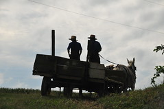 amish farmers (bluebird87) Tags: wagon amish farmers nikon d300