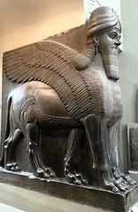 Winged lion, British Museum (Kathryn Dobson) Tags: statue ancient iraq kalha gypsum iphoneography wingedlion sculpture neoassyrian assyrian museum britishmuseum