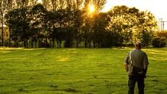 Evening Light:Sunset (billdsym) Tags: annan scotland slideshow