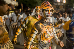 First ever Tigress @ Thrissur festival (Rehna Fathima)