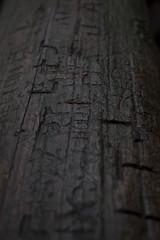 IMG_8348 (awebbMHAcad) Tags: underexposure tree trees wood wooden log treetrunk trunk carving carvings vandalism