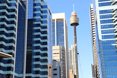 Sydney Tower (lukedrich_photography) Tags: australia oz commonwealth        newsouthwales nsw canon t6i canont6i history culture sydney       metro city cbd centralbusinessdistrict tower structure building architecture observation outlook viewpoint skyline eye amp westfield centrepoint