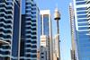 Sydney Tower (lukedrich_photography) Tags: australia oz commonwealth أستراليا 澳大利亚 澳大利亞 ऑस्ट्रेलिया オーストラリア 호주 австралия newsouthwales nsw canon t6i canont6i history culture sydney سيدني 悉尼 सिडनी シドニー 시드니 сидней metro city cbd centralbusinessdistrict tower structure building architecture observation outlook viewpoint skyline eye amp westfield centrepoint