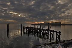 Wharf Ruins Behind the Chamberlin (JerryGammon) Tags: seawall wharf cormorant chamberlin fortmonroe