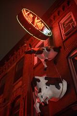 Kit Kat (Ben Roffelsen Photography) Tags: street red toronto sign cow kat downtown king district entertainment kit kitkat blogto torontoist