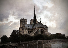 notre dame in paris (Rex Montalban) Tags: paris france europe notredamecathedral hss rexmontalbanphotography sliderssunday