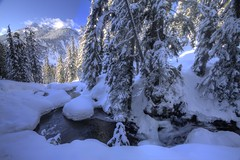 Snow Shoeing (Andrew E. Larsen) Tags: winter white snow cold snowshoeing wintersky snoqualmiepass papalars andrewlarsen andrewlarsenphotography