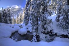 Snow Shoeing (Andrew E. Larsen) Tags: winter white snow cold snowshoeing wintersky snoqualmiepass papalars andrewlarsen andrewlarsenphotography