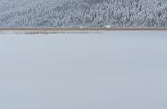 Cerkniško jezero (happy.apple) Tags: winter snow ice landscape led slovenia slovenija zima sneg cerknicalake cerkniškojezero intermittentlake presihajočejezero