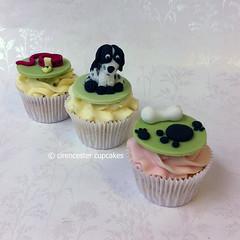Cupcakes - Meg the Spaniel (Crumbs & Corkscrews) Tags: birthday dog cake print paw cotswolds celebration cupcake spaniel bone lead blueroan cupcaketopper cirencestercupcakes